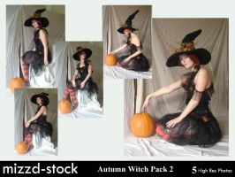 Autumn Witch Pack 2 by mizzd-stock