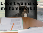 i dont want to do my homework