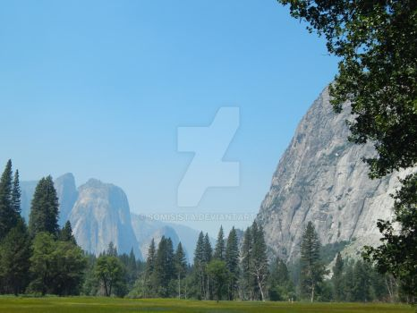 Yosemite National Park by somisista