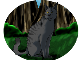 Graypaw- request by my friend by danituco