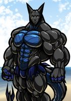 Bruce at the beach by Serisegala