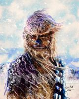 Chewbacca by Twynsunz