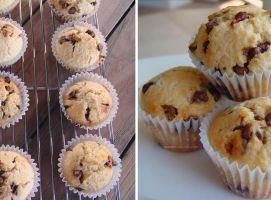 Chocolate Chip-muffins by maytel