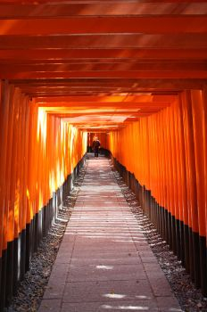 Tunnel of Torii Gates by Carotah