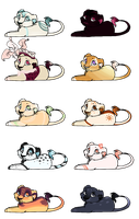 CLOSED AUCTION : Lion Cub Adopts by Laurel3aby
