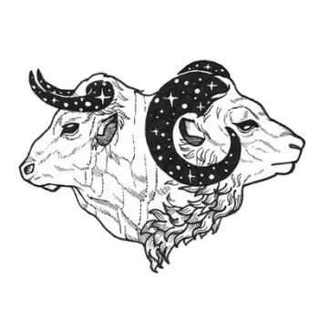 Tattoo sketch - Starry Horns by Claire-CHR
