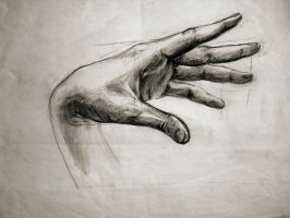 My Hand by SMcNonnahs