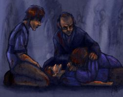 Deathly Hallows SPOILERS 1 by Deisi