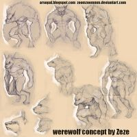 werewolf concept sheet by ZOOMZOOMMM