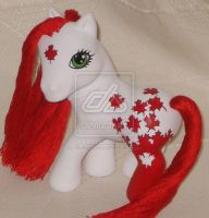 Candian Mascot Pony by customlpvalley