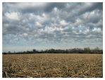 Quintessence of the Midwest by AForAdultery