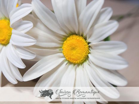 Daisy - Polymer Clay Flowers by SaisonRomantique