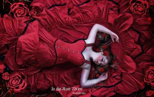 In The Rose Thorn by SeventhFairy