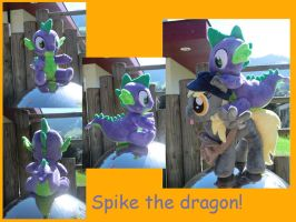 Spikey-wikey by Caleighs-World