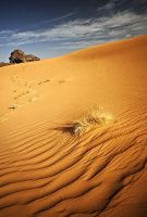 wave of sand I by ChristopheCarlier