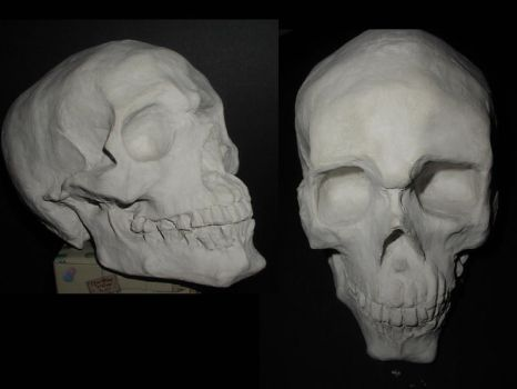 Alfred the Skull by candiedfool