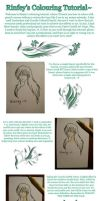 Colouring With Pencil Tutorial by rinfey