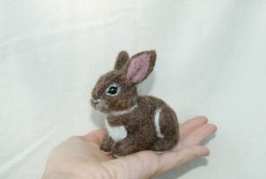 Needle Felted Bunny Rabbit by amber-rose-creations
