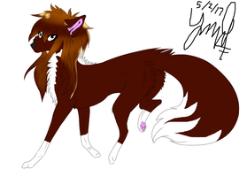 Dog! Venice by Nanohanan