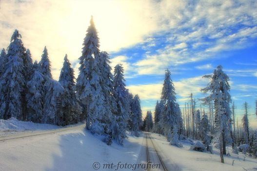 winter wonderland in the resin 10 by MT-Photografien