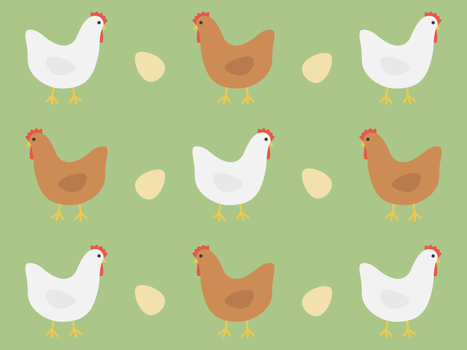 Chickens by apparate