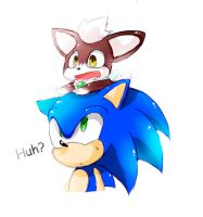 Sonic and Chip by 415sonic