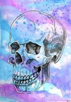 Skull Watercolor2 by crazy-fae