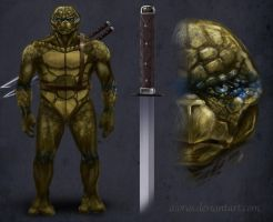 Ninja Turtle Concept by Aioras