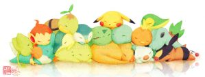 Pokemon: Sleepy Starters