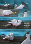 Among The Flock - Page 43 by Heichukar