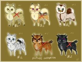 $2 and PICTURE Adopt owliez - CLOSED by Do-El