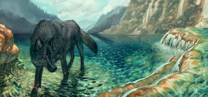 Shallows by NukeRooster