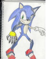 Cyber Sonic by SonicCrazyGal