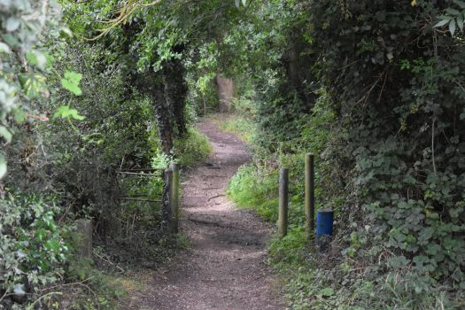 Winding Pathway at Beeleigh Lock by Willow-Sage773