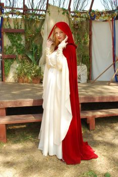 Medieval Gown and Cloak by Eveningarwen