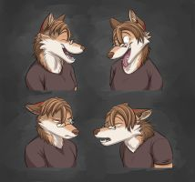 Commission: Thats-Complex Expression Sheet (Jacq) by Temiree