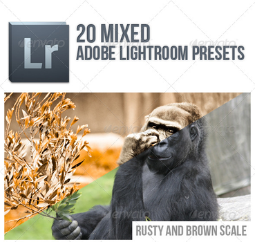 20 Mixed Lightroom Presets by FashionVictim89