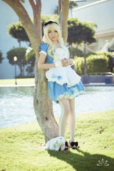 Alice Cosplay 1 by dezutron