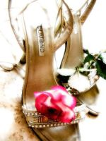 Rose and dancing shoes... by Larux