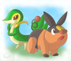 .:Tepig and Snivy:. by Volmise