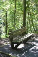 Bench seat by loustock