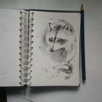 Instaart - Racoon by Candra