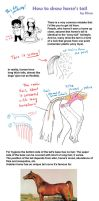 How to draw horse tail by Elruu