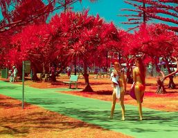Golden Girls of the Gold Coast II by colinbm1
