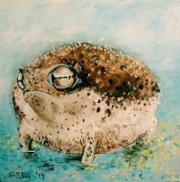 namaqua rain frog won't have any of it by DoodleWithGlueGun