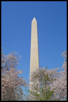 Our Nation's Capital 2 by TheGrandAdmiral